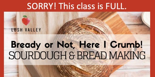 Bready or Not, Here I Crumb! Sourdough & Bread Making