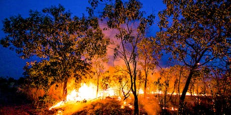 From the Amazon to Indonesia: Rainforest Fires, Deforestation and US Policy tickets