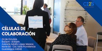 Células de Colaboración (Guadalajara)