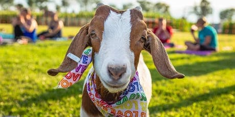 Goat Yoga Rockin' the 80's! at Spyglass Ridge Winery tickets