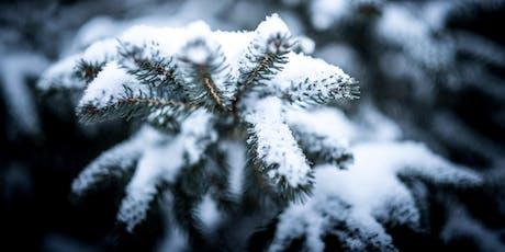 Winter Tree Identification Walk tickets
