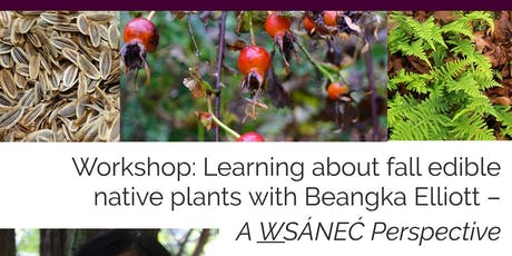 Fall Edible Native Plants with Beangka Elliott – A W̱SÁNEĆ Perspective tickets