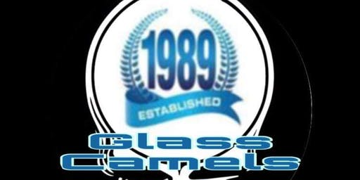 Glass Camels 30 Year Anniversary At 1904