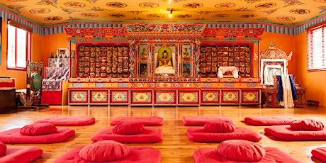 Meditation Retreat Feb 2020 tickets