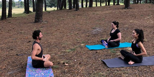 Yoga in the Forest - Restorative