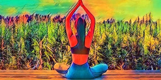 Canna Healing Yoga Session and Learning Experience