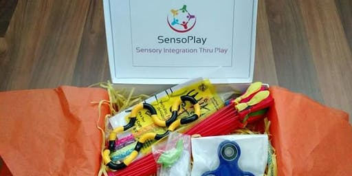 SensoPlay Sensory Box at Hubbard Trunk or Treat/Special Needs Resource Fair
