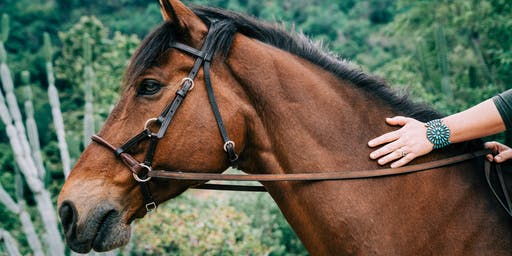 """Calm the Chaos"" Digital Detox Day Retreat: Horse Therapy & Coaching in LA"