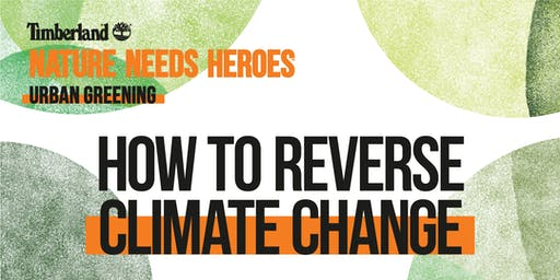 How to Reverse Climate Change - talk with Wessel Koning & Suze Gehem