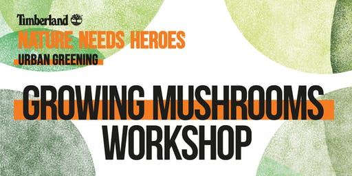 Growing Mushrooms Workshop