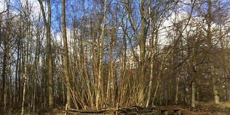 Coppicing for Conservation tickets