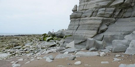 Eastbourne, East Sussex - GEOLOGICAL FOSSIL FIELD TRIP tickets