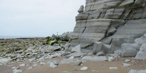 Beachy Head to Birling Gap, East Sussex - GEOLOGICAL FOSSIL FIELD TRIP