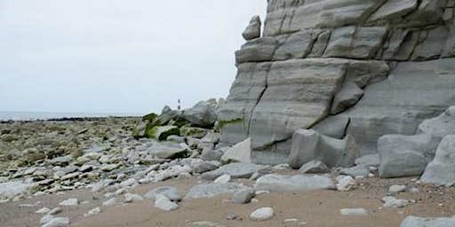 Eastbourne, East Sussex - GEOLOGICAL FOSSIL FIELD TRIP