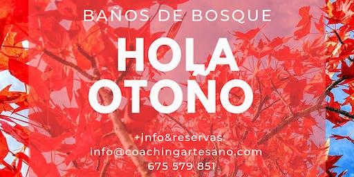 Baño de Bosque 27 oct - Otoño en Bosque de la Herreria, El Escorial