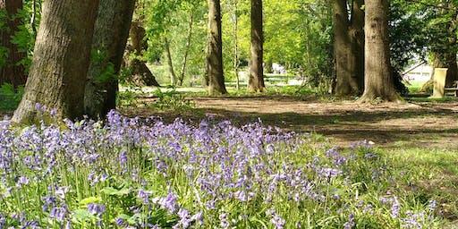 Spring Treasure Hunt at South Hill Park