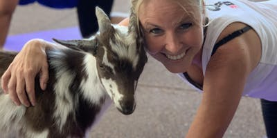 Warrior Spirit Wellness Goat Yoga