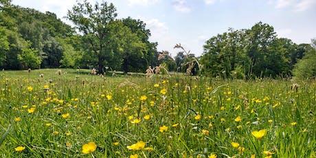 Spring treasure hunt at Lily Hill Park tickets