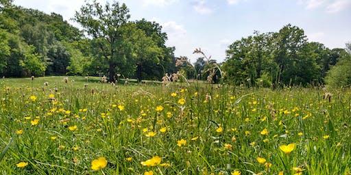 Spring treasure hunt at Lily Hill Park