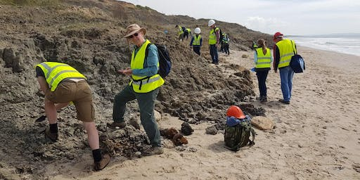 Barton on Sea, Hampshire - GEOLOGICAL AND FOSSIL FIELD TRIP