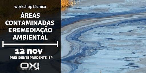 Workshop Técnico - Áreas Contaminadas e Remediação Ambiental