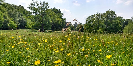 Spring treasure hunt at Lily Hill Park tickets