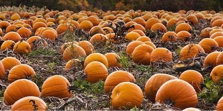 Pumpkin Wheelie Workshop 1 (Meanwood Urban Farm) tickets