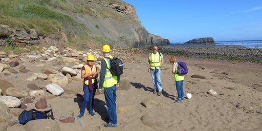 Saltwick Bay, Yorkshire - GEOLOGICAL AND FOSSIL FIELD TRIP