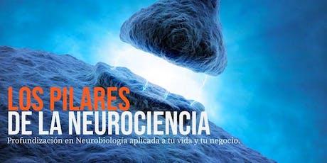 Los Pilares de la Neurociencia 8 & 9 Nov-MAD entradas