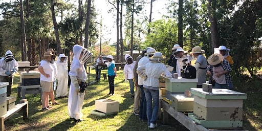 South Brevard New Beekeeper school 2020