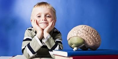 Are your kids driving you bonkers?