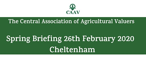 Spring Briefing - Cheltenham