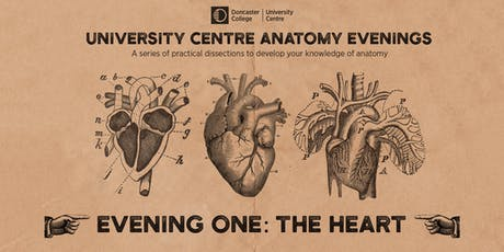 Anatomy Evenings. Evening One: The Heart  tickets