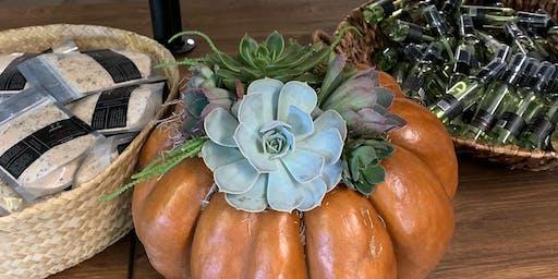 Succulent Pumpkins at Mobaak