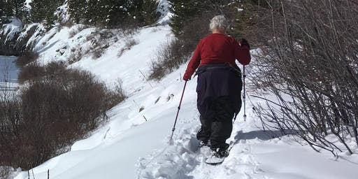 Silver Crest Snowshoe—Easy