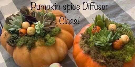 Craft Class - Pumpkin Succulent Diffuser