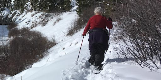 Silver Crest/Memorial Falls Snowshoe—Moderately Easy