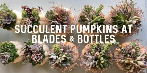 Succulent Pumpkin Workshop at Blades & Bottles