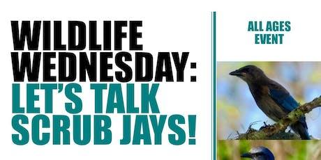Wildlife Wednesday Let's Talk Scrub Jays tickets