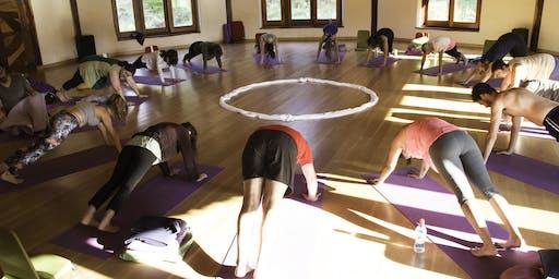 Inauguración Escuela Yoga Tierra