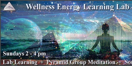 Wellness Energy Learning Lab - WELL Weekly tickets