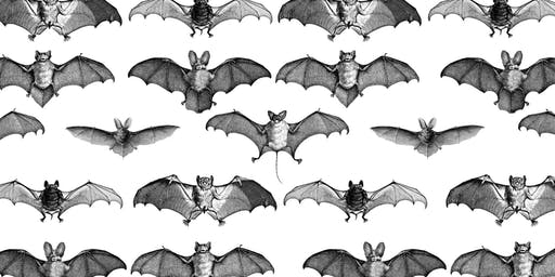 Bat Houses: A Halloween Carpentry Workshop