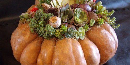 Succulents  and Pumpkin Class