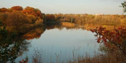 Humber Marshes Hike