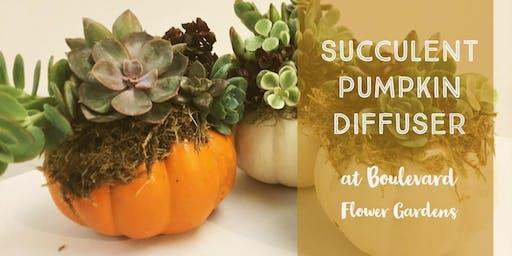 DIY Pumpkin Succulent Diffusers
