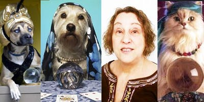 Pet Psychic Communication Circle with Shelley Hofberg at Ipso Facto Nov 13, 7:30 pm