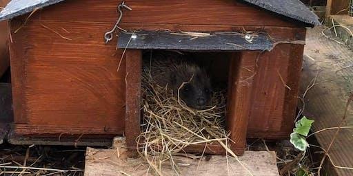 Build your own hedgehog house workshop