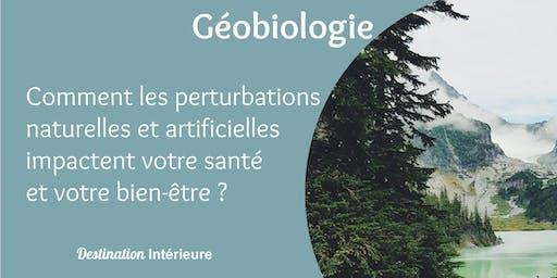Géobiologie : Impact des nuisances environnementales sur la vie quotidienne
