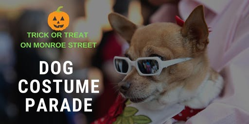 Trick or Treat on Monroe Street Dog Costume Parade