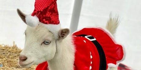 Goat Yoga Nashville- Happy Holiday's Class tickets